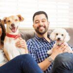 Evcil Hayvan Besleyenler İçin Dekorasyon Önerileri
